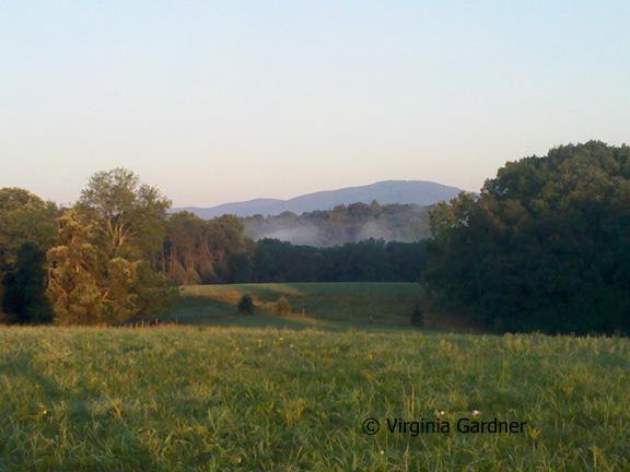 Fall Mountain View in Earlysville VA