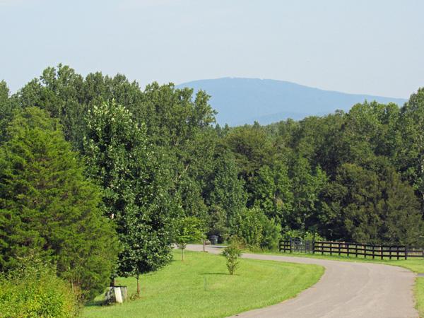 neighborhood Road in Earlysville