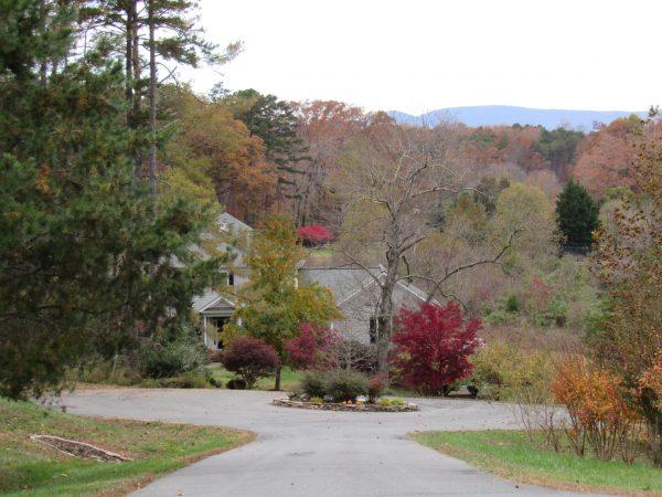 Street View in Walnut Hill, and Earlysville Road Neighborhood